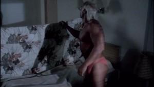 Hogan vous regarde faire la nuit...