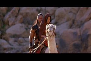 """""""...là c'est à cause du va-et-viens du chameau, je te jure!"""""""