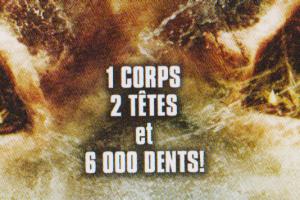 Et un requin, ça n'a pas 3000 dents!