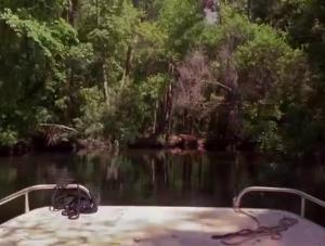 Le 89 minutes de McCinsey's Island comporte son lot de scènes inutiles. Faut le faire. 5 minutes de bateau qui flotte pour rien.