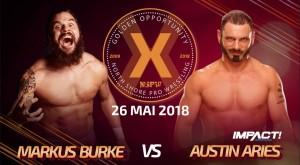 burke-vs-aries