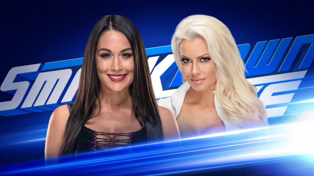 brie-bella-vs-maryse