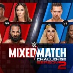 mixed-match-challenge-2