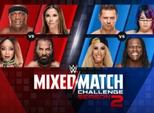 mixed-match-challenge-2