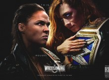 WW Rousey and Lynch