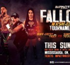 mash-up tournoi impact wrestling