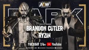 2020-11-17 Brandon Cutler c. Ryzin