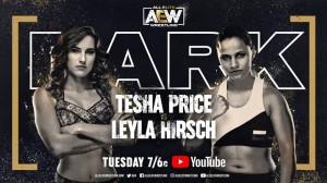 2020-11-17 Tesha Price c. Leyla Hirsch